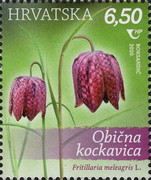 [Croatian Flora - Protected Species, Typ AYU]