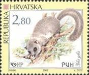 [Croatian Rodents, type UY]