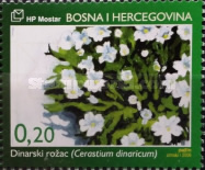 [Endemic Plants of Bosnia and Herzegovina, type GB]