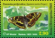 [Insects - Yellow-Banded Skipper, type TT]