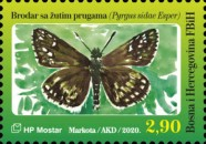 [Insects - Yellow-Banded Skipper, type TV]