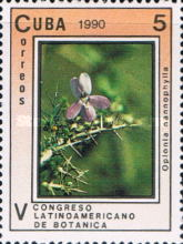 [The 5th Latin American Botanical Congress, type ETD]