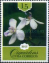 [Flowers - Orchids, type IPB]