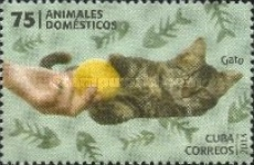 [Domestic Animals, type IQN]