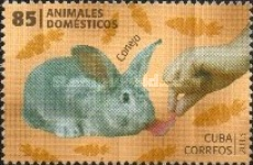 [Domestic Animals, type IQO]