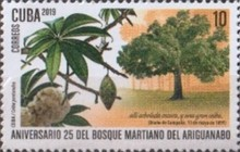 [The 25th Anniversary of the Ariguanabo Martí Forest, type JUY]