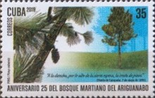 [The 25th Anniversary of the Ariguanabo Martí Forest, type JVB]