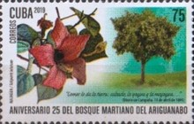 [The 25th Anniversary of the Ariguanabo Martí Forest, type JVC]
