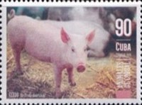 [Farm Animals, type JWX]
