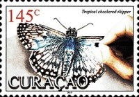 [Insects - Butterflies, Typ SL]