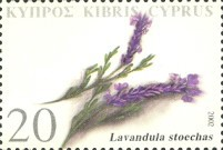[Therapeutic Plants of Cyprus, type AEQ]