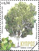 [Centennial trees in Cyprus, type AUE]