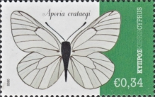 [Insects - Butterflies, type AUY]