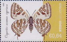 [Insects - Butterflies, type AVA]
