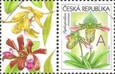 [Orchids - Personalized Stamp, type ABH]