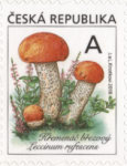 [Definitives - Edible Mushrooms, type AKR]