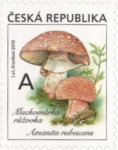 [Definitives - Edible Mushrooms, type AKS]