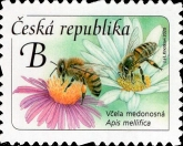 [Definitive - Honey Bee, type ANV]