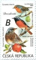 [Birds - Songbirds, type AOD]