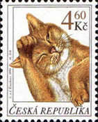[Cats, type GS]