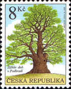 [Nature Conservation - Protected Trees, type OO]
