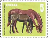 [Thoroughbred Horses, Typ AIT]