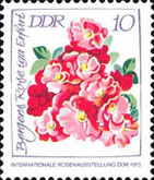 [International Rose Exhibition - Smaller Edition, Typ BAH1]
