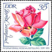 [International Rose Exhibition, type BAL]