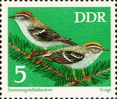 [Protected Songbirds, Typ BCW]