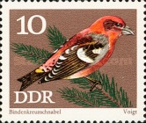 [Protected Songbirds, Typ BCX]