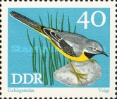 [Protected Songbirds, Typ BDC]