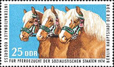 [Horses - International Horse Breeders of Socialist Countries Congress, Typ BHY]