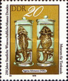 [The 250th Anniversary of Dresden Museum of Science, Typ BXH]