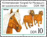 [Horses - The 40th International Horse Breeders of Socialist Countries Congress, Typ DEJ]