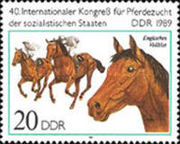 [Horses - The 40th International Horse Breeders of Socialist Countries Congress, Typ DEK]