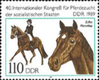 [Horses - The 40th International Horse Breeders of Socialist Countries Congress, Typ DEM]