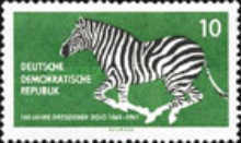 [The 100th Anniversary of Dresden Zoo, Typ QY]
