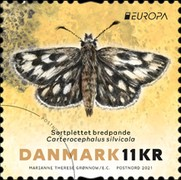 [Insects - Butterflies, type BAL]