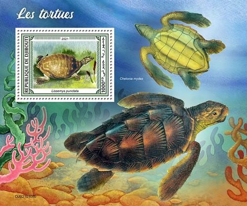 [Fauna - Turtles, type ]