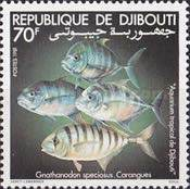 [Djibouti Tropical Aquarium, Typ CZ]