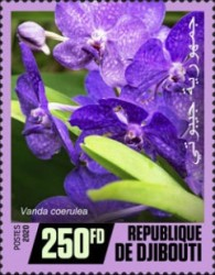 [Flowers - Orchids, Typ DQR]