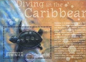 [Diving in the Caribbean - Depicting Marine Life, Typ ]