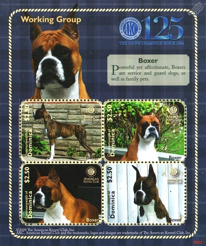 [The 125th Anniversary of AKC - American Kennel Club, type ]