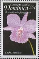 [Orchids of the Caribbean, Typ CQB]