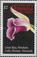[Orchids of the Caribbean, Typ CQE]