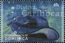 [Diving in the Caribbean - Depicting Marine Life, Typ DIO]