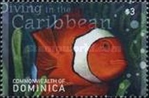 [Diving in the Caribbean - Depicting Marine Life, Typ DIQ]