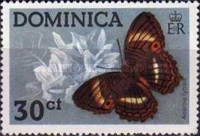 [Dominican Butterflies, type KZ]