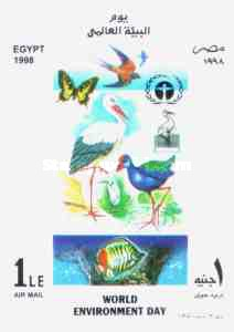 [World Environment Day, Typ XND]