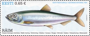 [National Fish of Estonia - Baltic Herring, Typ AAC]
